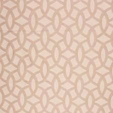 Tan Decorator Fabric by RM Coco