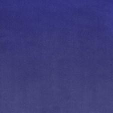 Wisteria Decorator Fabric by Silver State