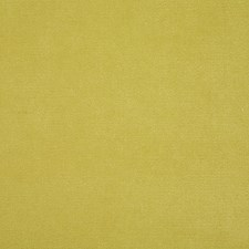 Lemongrass Solid Decorator Fabric by Pindler