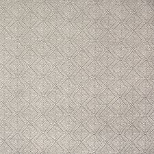Ash Decorator Fabric by Silver State