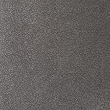 Silver Drop Contemporary Decorator Fabric by Kravet