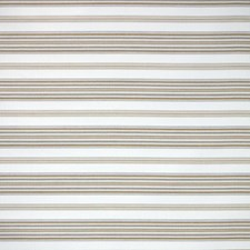 Cornsilk Decorator Fabric by Silver State