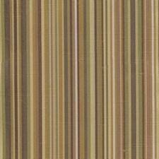 Grassland Decorator Fabric by Kasmir
