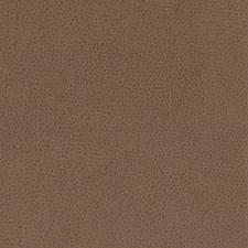 Cocoa Decorator Fabric by Silver State