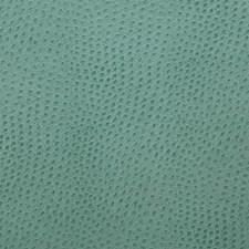 Capri Decorator Fabric by Pindler
