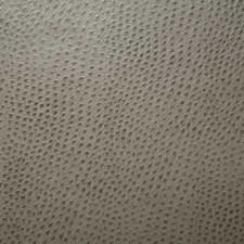 Jasper Decorator Fabric by Pindler