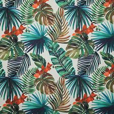 Island Traditional Decorator Fabric by Pindler