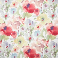 Garden Contemporary Decorator Fabric by Pindler