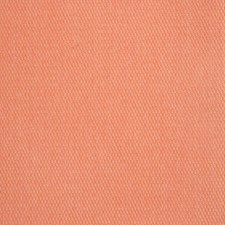 Guava Decorator Fabric by Silver State