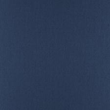 Stellar Decorator Fabric by RM Coco