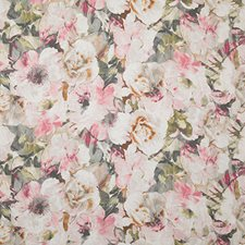Cameo Print Decorator Fabric by Pindler