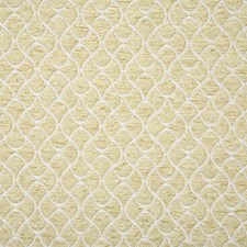 Gold Decorator Fabric by Pindler
