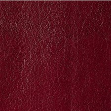 Marooned Skins Decorator Fabric by Kravet