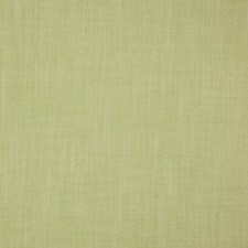 Limeade Decorator Fabric by RM Coco