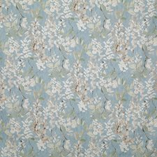 Sky Traditional Decorator Fabric by Pindler
