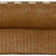Cord With Lip Calf Trim by Kravet