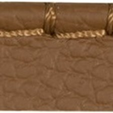 Cord Without Lip Sable Trim by Kravet