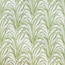 White/Green/Light Green Botanical Decorator Fabric by Kravet