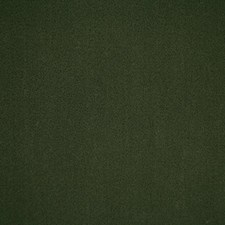 Juniper Solid Decorator Fabric by Pindler