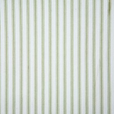 Fern Stripe Decorator Fabric by Pindler