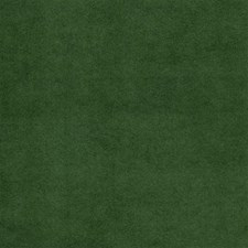 Lawn Solids Decorator Fabric by Kravet