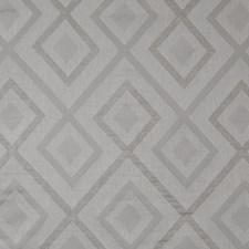 Cruet Decorator Fabric by Maxwell