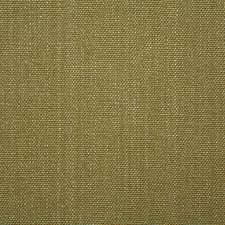 Aloe Solid Decorator Fabric by Pindler
