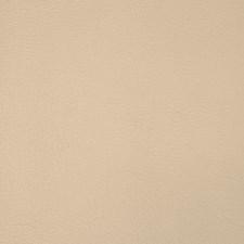 Bone Decorator Fabric by Silver State