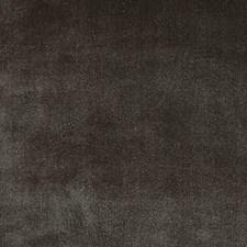 Bear Decorator Fabric by Scalamandre