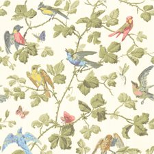Multi-Coloured Wallcovering by Cole & Son Wallpaper