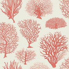 Coral Print Wallcovering by Cole & Son Wallpaper