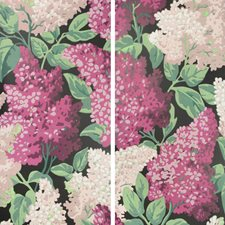 M/B/C Print Wallcovering by Cole & Son Wallpaper