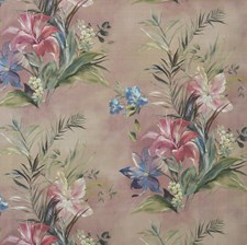 Blush Wallcovering by Maxwell