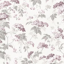 Purple Traditional Wallpaper Wallcovering by Brewster