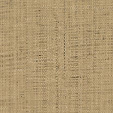 Honey Faux Effects Wallcovering by Brewster