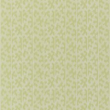 Lime Blossom Wallcovering by Schumacher Wallpaper