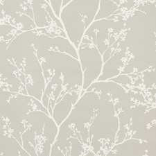 Soft Grey Wallcovering by Schumacher