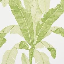 Leaf Wallcovering by Schumacher Wallpaper