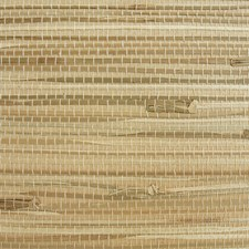 Brown/Green/Taupe Contemporary Wallcovering by JF Wallpapers