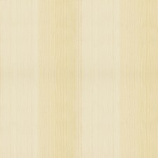 Stucco Wallcovering by Schumacher Wallpaper