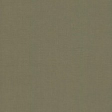5954 Gesso Weave by York