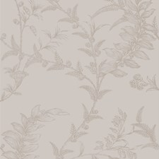 Tan Wallcovering by Cole & Son Wallpaper