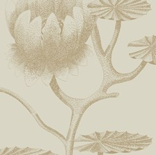 Linen/Gold Botanical Wallcovering by Cole & Son Wallpaper