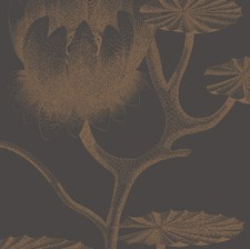 Black/Bronze Botanical Wallcovering by Cole & Son Wallpaper