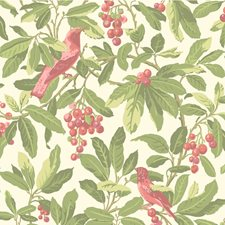 Olive/Pink Botanical Wallcovering by Cole & Son Wallpaper