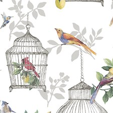 Songbirds On White Wallcovering by Scalamandre Wallpaper