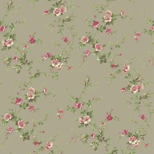Cloud Grey/Bright Pink/Raspberry Botanical Wallcovering by York