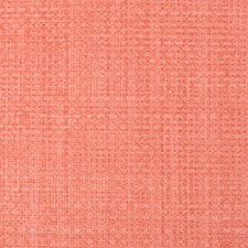 Watermelon Texture Wallcovering by Brunschwig & Fils