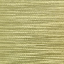 6863-28 Sisal Herb NC12 by Clarence House