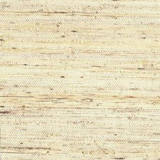 Cream/Beige/Tan Textures Wallcovering by York